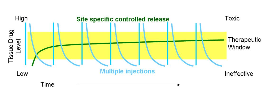 Implantable Drug Delivery Devices | An Overview